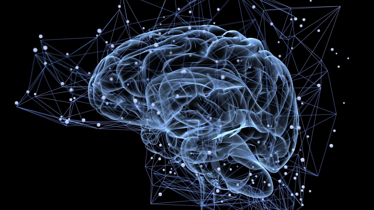Brain-Memory-Concept
